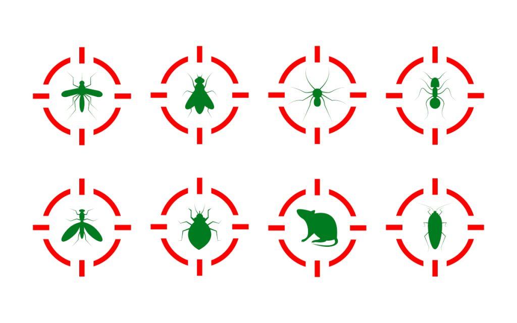 Akutmaßnahmen und Bekämpfung zum Schutz vor Schädlingen